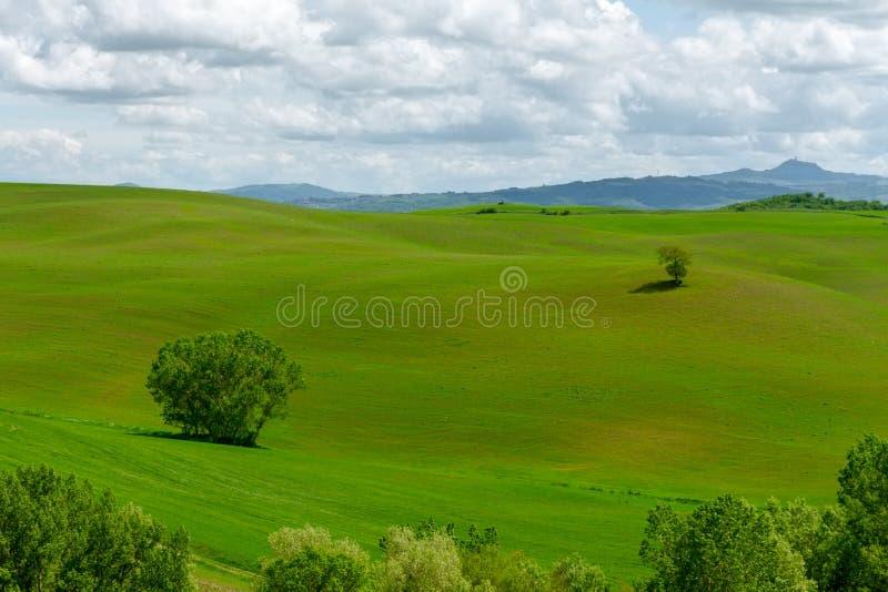 Χαρακτηριστικές Tuscan απόψεις στοκ φωτογραφία