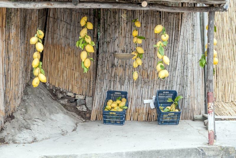 Χαρακτηριστική στάση των μεγάλων λεμονιών για την πώληση στην ακτή της Αμάλφης, Campania, Ιταλία στοκ εικόνα