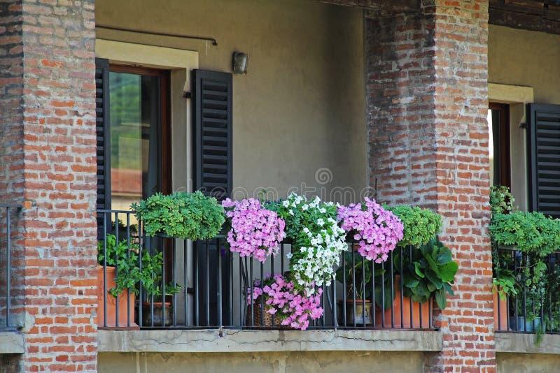 Χαρακτηριστικό κλασσικό ιταλικό μπαλκόνι σπιτιών με τα ανθίζοντας λουλούδια Βερόνα Ιταλία στοκ εικόνα