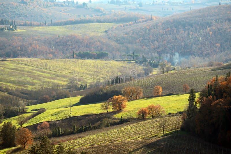 Χαρακτηριστικό τοπίο της Τοσκάνης το φθινόπωρο Οι λόφοι του νότου Chianti στοκ εικόνες