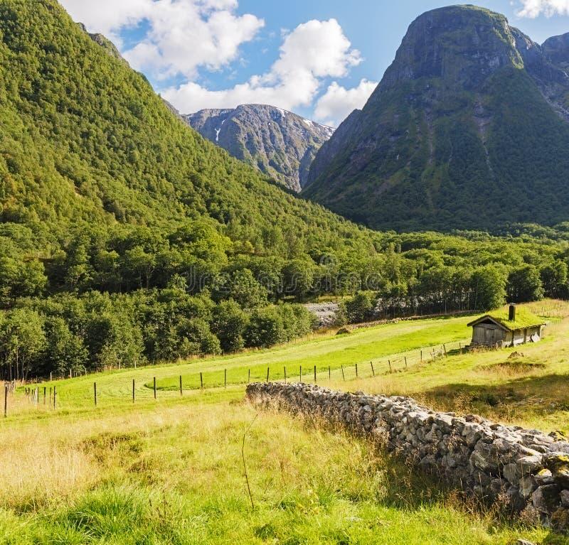 Χαρακτηριστικό τοπίο Mounrtain στη Νορβηγία στοκ εικόνα