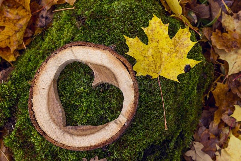 Χαρασμένη ξύλινη καρδιά σε ένα κολόβωμα με τα πεσμένα φύλλα σφενδάμου στα fores στοκ φωτογραφία με δικαίωμα ελεύθερης χρήσης