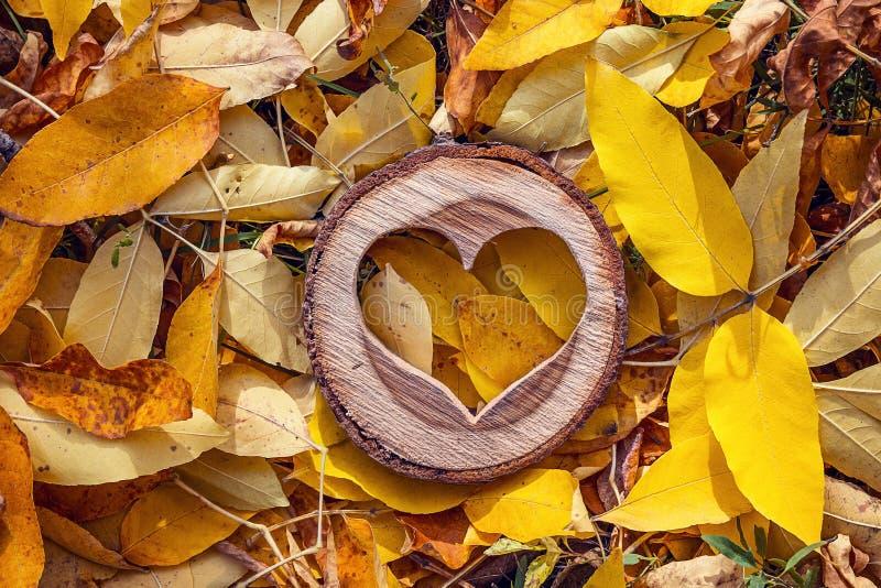 Χαρασμένη ξύλινη καρδιά στα κίτρινα πεσμένα φύλλα Τοπ άποψη με το γ στοκ φωτογραφίες