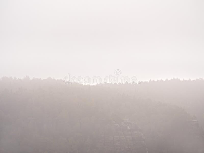 Χαραυγή νεράιδων στο σιωπηλό τοπίο Η παχιά ομίχλη ταλαντεύεται μεταξύ των πλευρών λόφων και της λουρίδας πέρα από τα δέντρα στοκ φωτογραφία με δικαίωμα ελεύθερης χρήσης