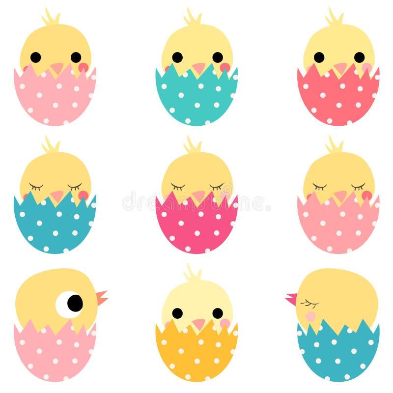 Χαριτωμένα κοτόπουλα Πάσχας στα χρωματισμένα αυγά διανυσματική απεικόνιση