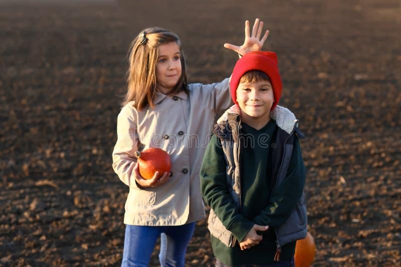 Χαριτωμένα μικρά παιδιά με την κολοκύθα στον τομέα φθινοπώρου στοκ φωτογραφία με δικαίωμα ελεύθερης χρήσης