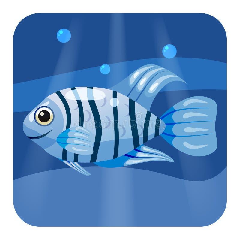 Χαριτωμένα όμορφα μπλε τροπικά ψάρια, στο υπόβαθρο θάλασσας, ωκεανός, διάνυσμα, που απομονώνεται, ύφος κινούμενων σχεδίων ελεύθερη απεικόνιση δικαιώματος
