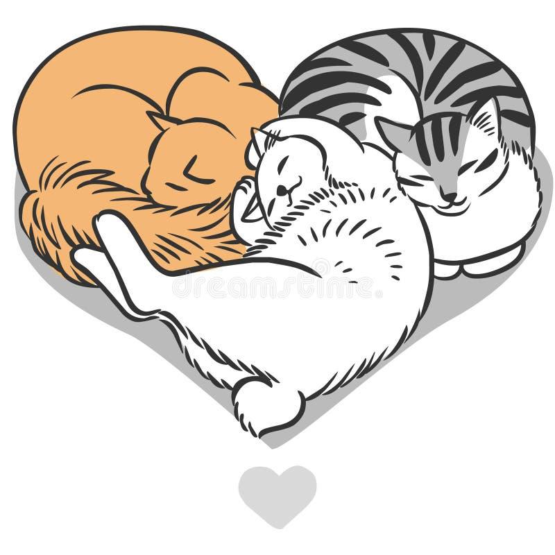 Χαριτωμένες χνουδωτές γάτες διανυσματική απεικόνιση