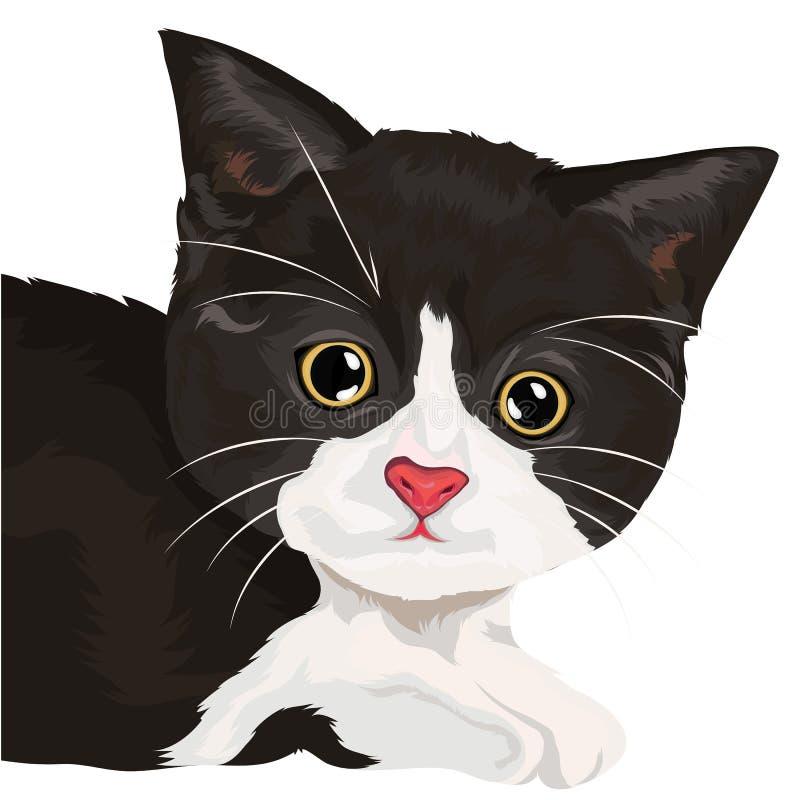 Χαριτωμένη γάτα απεικόνιση αποθεμάτων