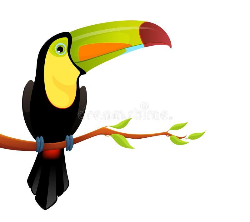 Χαριτωμένη ζωηρόχρωμη toucan συνεδρίαση σε έναν κλάδο δέντρων διανυσματική απεικόνιση