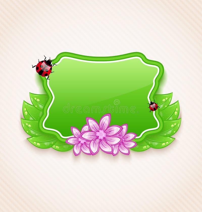 Χαριτωμένη κάρτα άνοιξη με το λουλούδι, φύλλα, κυρία-κάνθαρος διανυσματική απεικόνιση