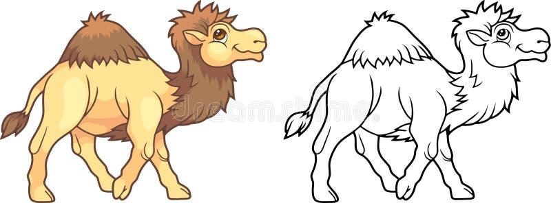 Χαριτωμένη καμήλα, αστείο χρωματίζοντας βιβλίο απεικόνισης διανυσματική απεικόνιση