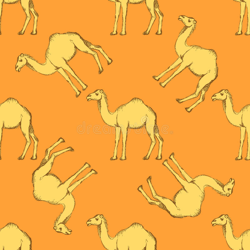 Χαριτωμένη καμήλα σκίτσων στο εκλεκτής ποιότητας ύφος διανυσματική απεικόνιση