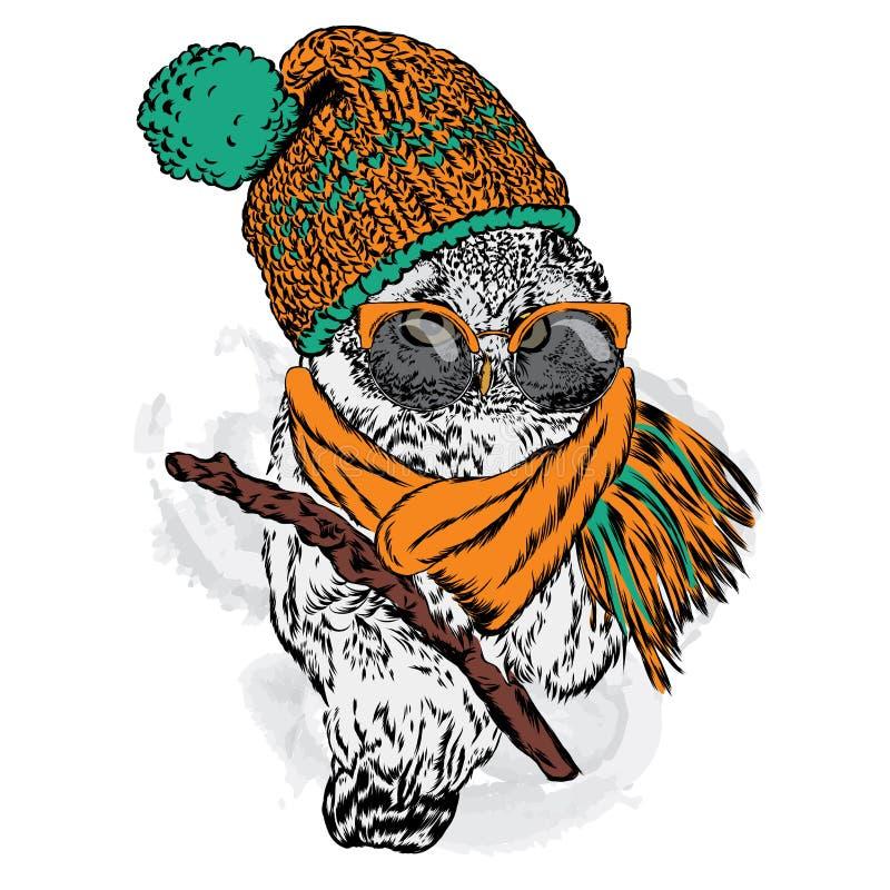 Χαριτωμένη κουκουβάγια που φορά ένα καπέλο και ένα μαντίλι διανυσματική απεικόνιση