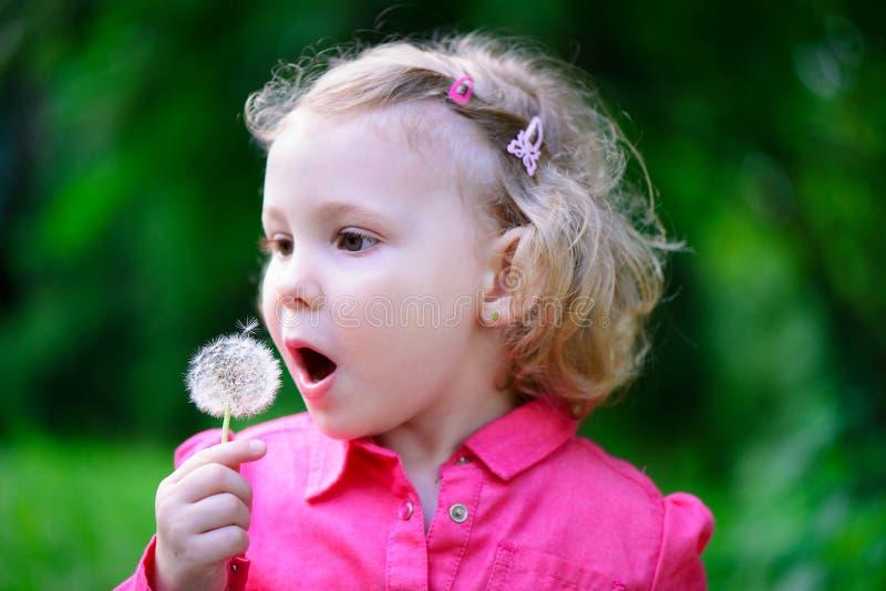 Χαριτωμένη φυσώντας πικραλίδα μικρών κοριτσιών στοκ φωτογραφία με δικαίωμα ελεύθερης χρήσης