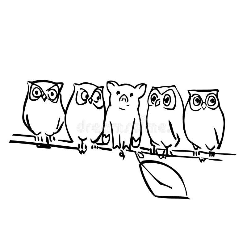 Χαριτωμένοι διανυσματικοί χοίρος και κουκουβάγιες στον κλάδο ελεύθερη απεικόνιση δικαιώματος