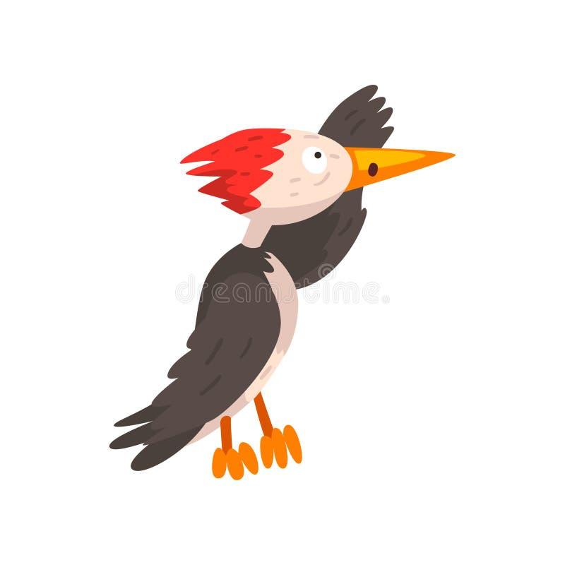 Χαριτωμένος δρυοκολάπτης που εξετάζει την απόσταση, αστεία διανυσματική απεικόνιση χαρακτήρα κινουμένων σχεδίων πουλιών σε ένα άσ ελεύθερη απεικόνιση δικαιώματος