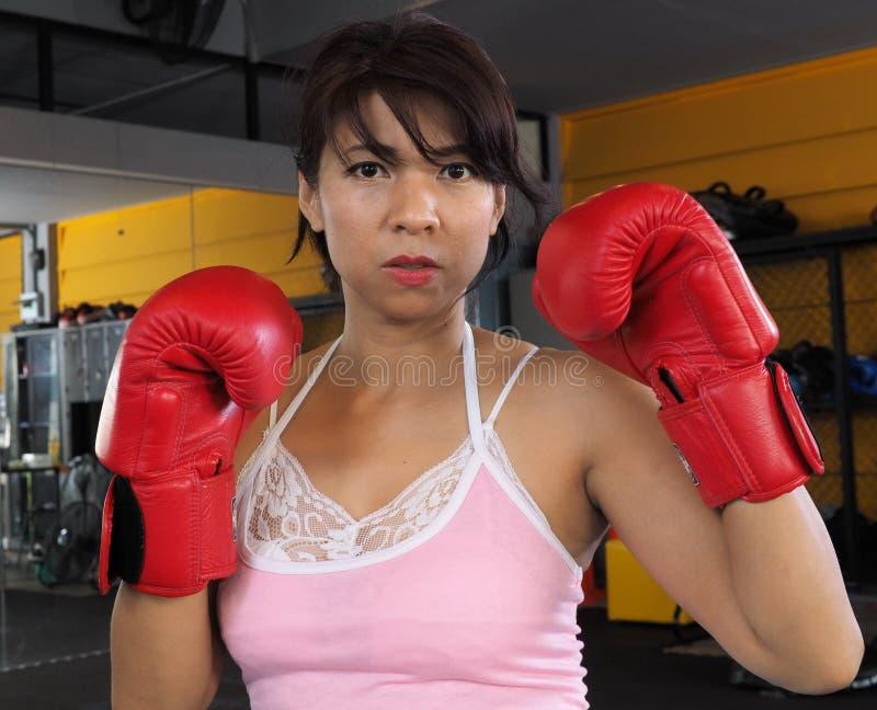 Χαριτωμένος θηλυκός μπόξερ που φορά τα κόκκινα εγκιβωτίζοντας γάντια στοκ φωτογραφία