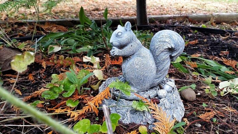 Χαριτωμένος διακοσμητικός σκίουρος σε μια ρύθμιση κήπων στοκ εικόνα με δικαίωμα ελεύθερης χρήσης