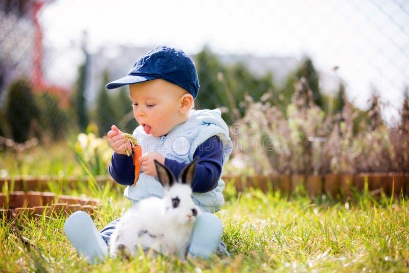 Χαριτωμένος λίγο αγοράκι, παιδί που ταΐζει λίγο λαγουδάκι με τα καρότα στοκ εικόνες