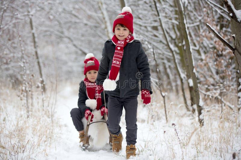 Χαριτωμένος λίγο αγόρι μικρών παιδιών και οι παλαιότεροι αδελφοί του, που παίζουν υπαίθρια με το χιόνι μια χειμερινή ημέρα στοκ εικόνα