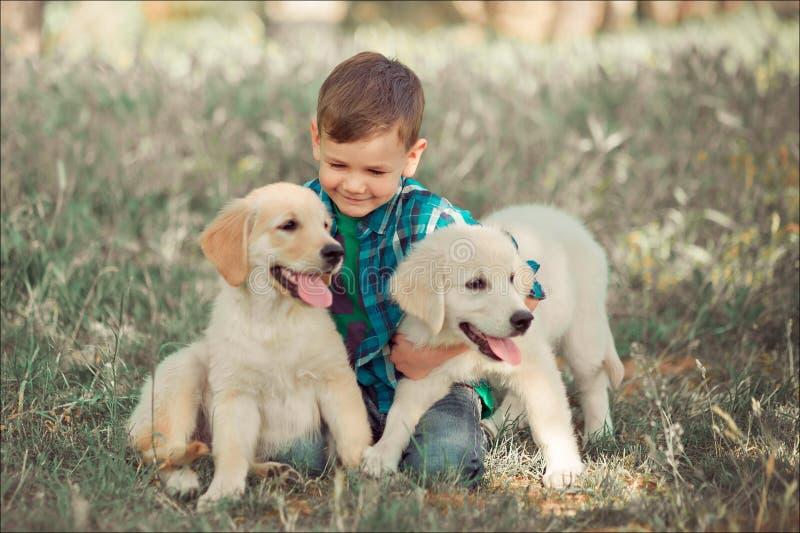 Χαριτωμένος όμορφος έφηβος αγοριών με το παιχνίδι μπλε ματιών υπαίθριο με το καταπληκτικό άσπρο ρόδινο retriever του Λαμπραντόρ κ στοκ φωτογραφία