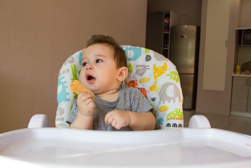 Χαριτωμένο αγοράκι πορτρέτου που τρώει το μπισκότο παιδιών τα πρώτα τρόφιμα για τα μωρά 10 μήνες αγόρι μικρών παιδιών που μαθαίνε στοκ φωτογραφία