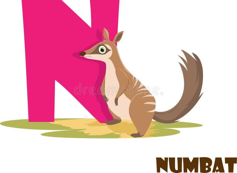 Χαριτωμένο ζωικό αλφάβητο ζωολογικών κήπων Γράμμα Ν για Numbat στοκ φωτογραφία με δικαίωμα ελεύθερης χρήσης