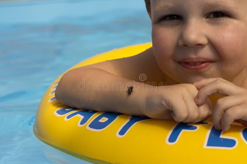 Χαριτωμένο και αστείο μικρό κορίτσι στην πισίνα, που κολυμπά στο διογκώσιμο δαχτυλίδι, έννοια τρόπου ζωής Ο διογκώσιμος κύκλος Κα στοκ εικόνες με δικαίωμα ελεύθερης χρήσης