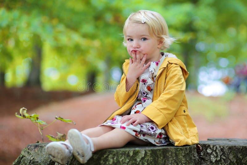 Χαριτωμένο κορίτσι μικρών παιδιών στο πάρκο στοκ εικόνα