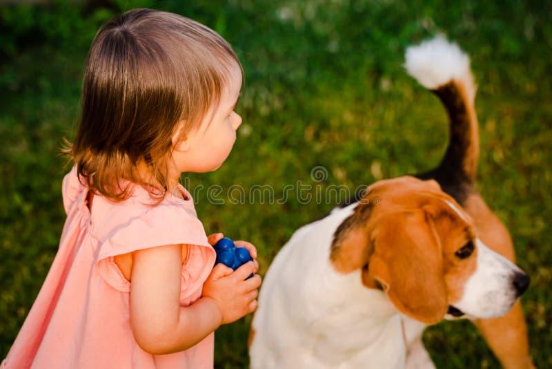Χαριτωμένο κοριτσάκι μαζί με το σκυλί λαγωνικών στον κήπο στη θερινή ημέρα στοκ εικόνες