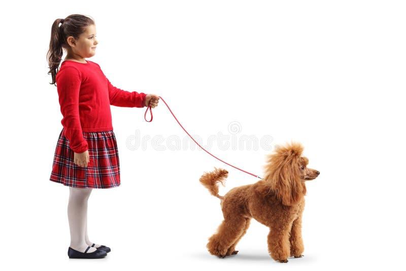 Χαριτωμένο μικρό κορίτσι με ένα κόκκινο poodle σκυλί σε ένα λουρί στοκ φωτογραφίες με δικαίωμα ελεύθερης χρήσης