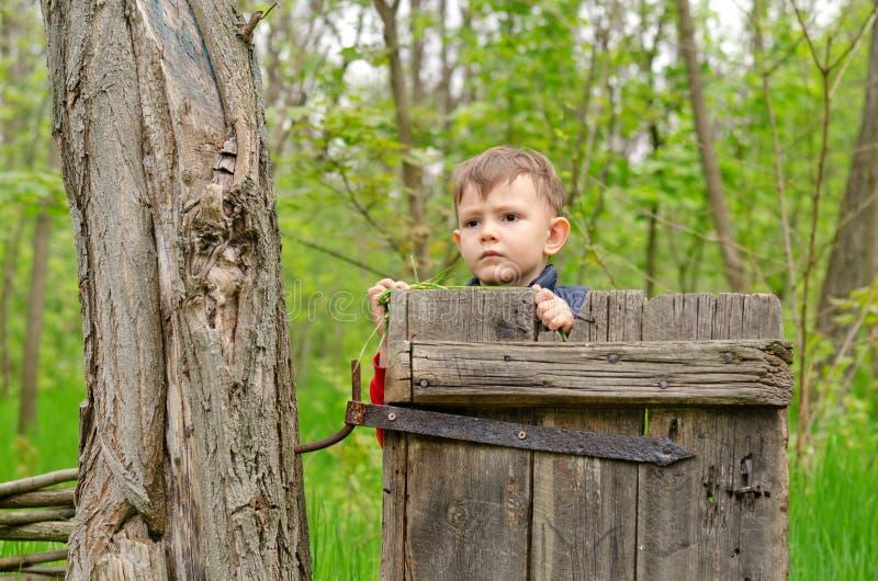 Χαριτωμένο μικρό παιδί που κοιτάζει αδιάκριτα πέρα από μια παλαιά ξύλινη πύλη στοκ εικόνες