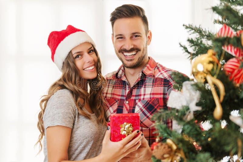 Χαριτωμένο, νέο ζεύγος που διακοσμεί ένα χριστουγεννιάτικο δέντρο στοκ εικόνες