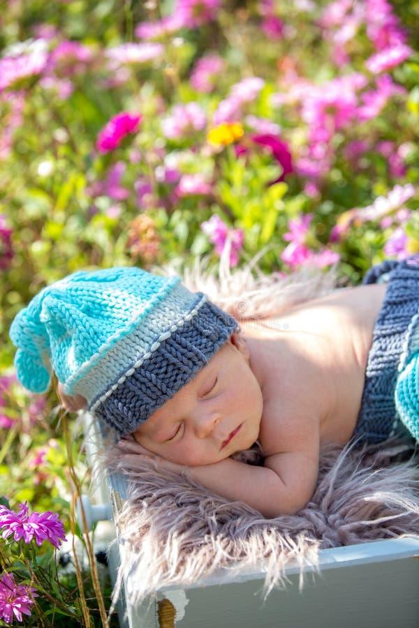 Χαριτωμένο νεογέννητο αγοράκι, που κοιμάται ειρηνικά στο καλάθι στον κήπο στοκ φωτογραφία