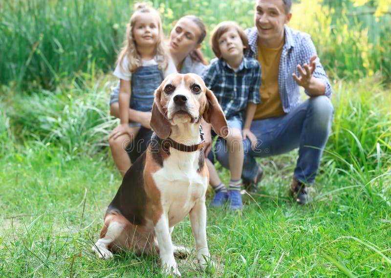 Χαριτωμένο σκυλί λαγωνικών με την ευτυχή οικογένεια στο πάρκο στοκ φωτογραφία με δικαίωμα ελεύθερης χρήσης