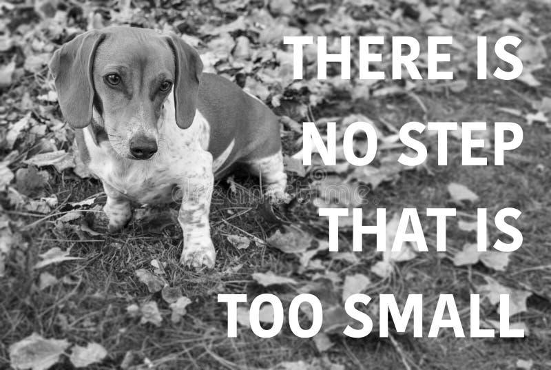 Χαριτωμένο σκυλί κουταβιών dachshund με την παροιμία γραπτή στοκ εικόνα με δικαίωμα ελεύθερης χρήσης