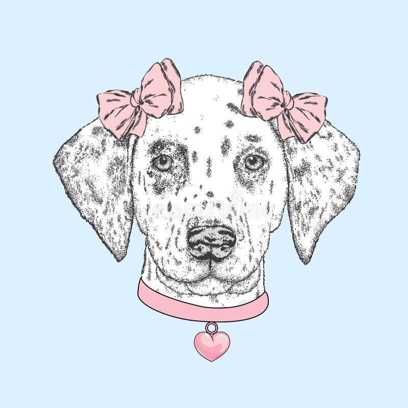 Χαριτωμένο σκυλί που φορά ένα περιλαίμιο με καρδιά και δύο τόξα Όμορφο από τη Δαλματία χρωμάτισε με το χέρι Διανυσματική απεικόνι διανυσματική απεικόνιση