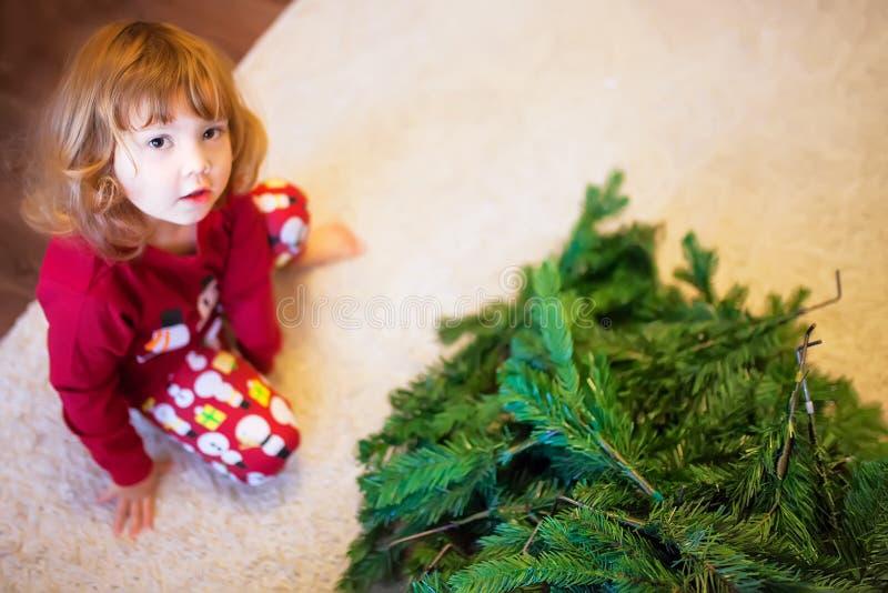 Χαριτωμένο χριστουγεννιάτικο δέντρο συγκέντρωσης μικρών κοριτσιών στοκ εικόνα με δικαίωμα ελεύθερης χρήσης