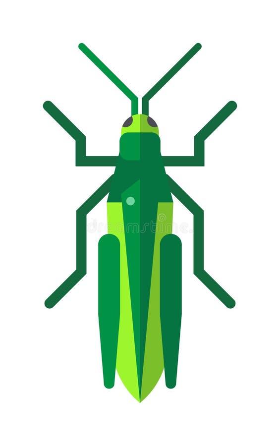 Χαριτωμένο grasshopper κινούμενων σχεδίων γεωργικό επίπεδο διάνυσμα εντόμων φύσης ακρίδων ζωολογικών κήπων μεγάλο πράσινο απεικόνιση αποθεμάτων