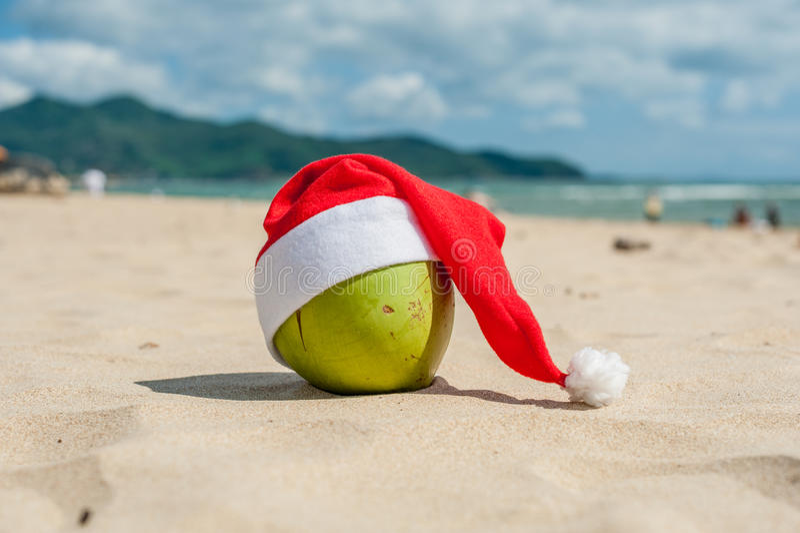 Χαρούμενα Χριστούγεννα και καλή χρονιά στη θερινή παραλία Καρύδα στο καπέλο santa Φοίνικες και μπλε ουρανός στο υπόβαθρο στοκ εικόνα με δικαίωμα ελεύθερης χρήσης