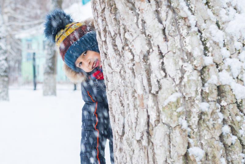 Χαρούμενο αγόρι κοιτάζει έξω από ένα δέντρο χειμερινή βόλτα στοκ εικόνες με δικαίωμα ελεύθερης χρήσης