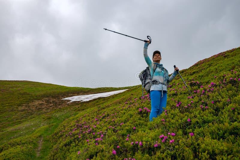 Χαρούμενο θηλυκό τυχοδιωκτών με τις ανοικτές αγκάλες στο λιβάδι βουνών στοκ φωτογραφίες με δικαίωμα ελεύθερης χρήσης