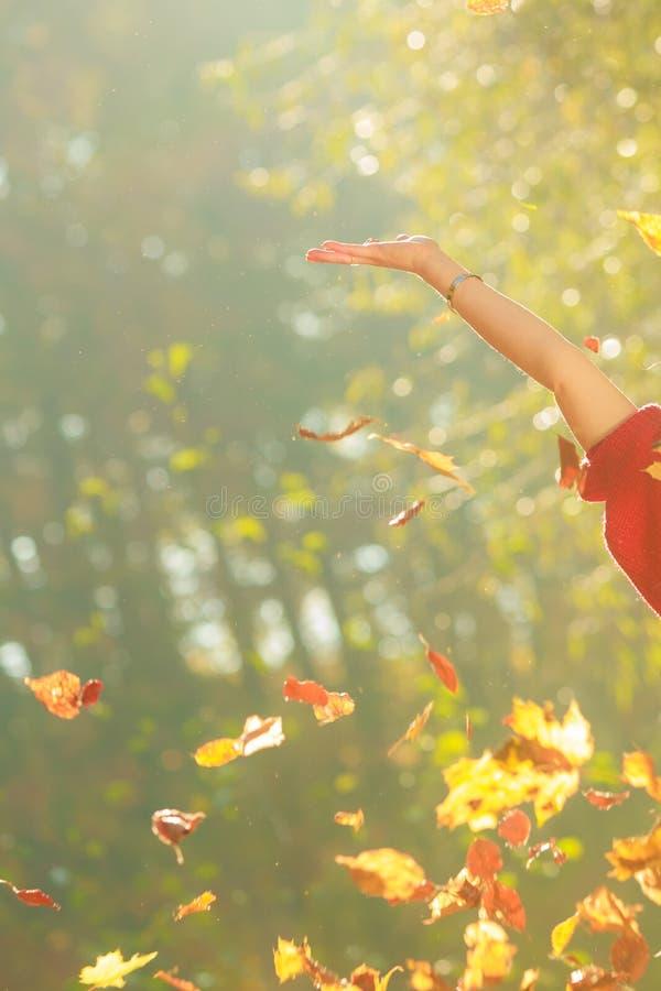 Χαρούμενο κορίτσι που έχει τη διασκέδαση με τα φύλλα στο φθινοπωρινό πάρκο στοκ φωτογραφίες