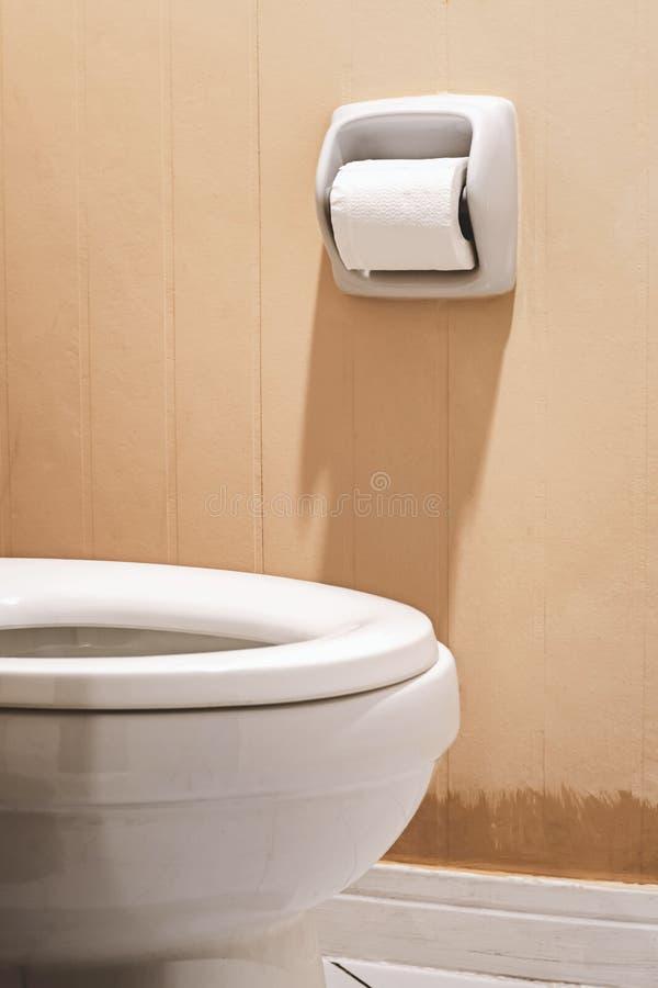 Χαρτί υγείας και λεκάνη τουαλέτας στοκ φωτογραφία