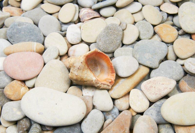 Χαλίκι θάλασσας στοκ φωτογραφίες με δικαίωμα ελεύθερης χρήσης