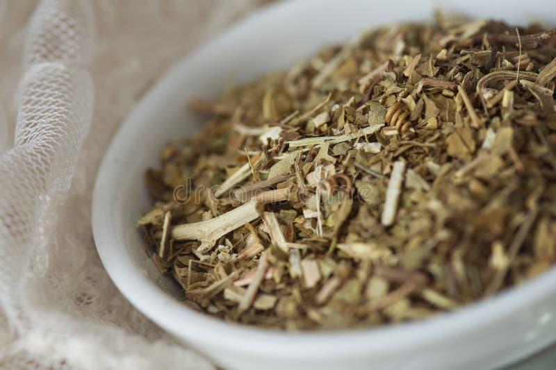 Χαλαρό τσάι Passionflower (Passiflora) στοκ φωτογραφία με δικαίωμα ελεύθερης χρήσης