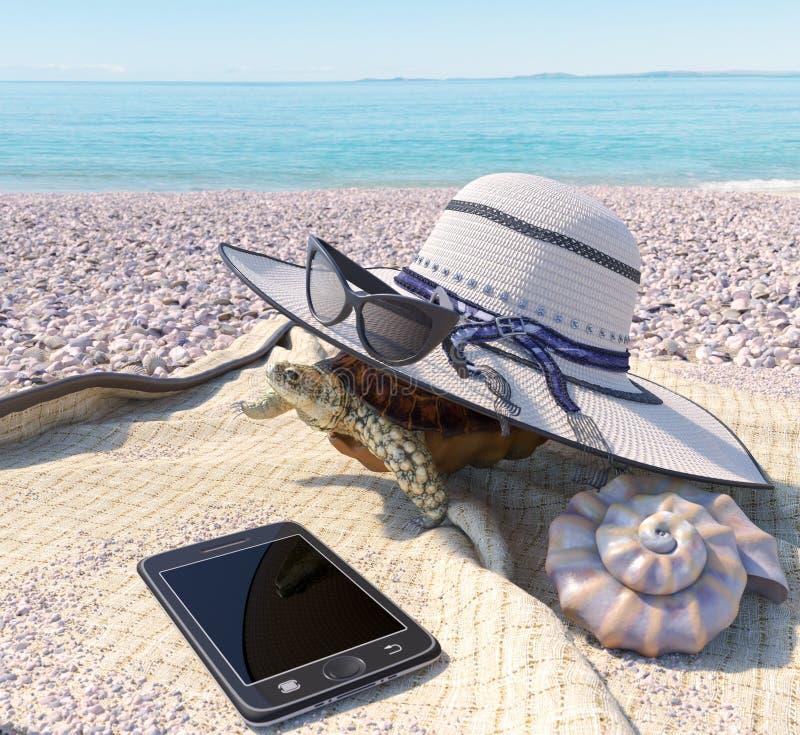 Χαλαρώνοντας υπόβαθρο έννοιας διακοπών με τα εξαρτήματα θαλασσινών κοχυλιών, χελωνών και παραλιών στοκ φωτογραφία με δικαίωμα ελεύθερης χρήσης