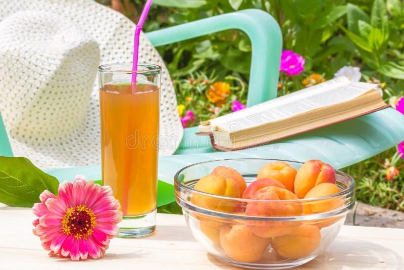 Χαλαρώστε στον ανθίζοντας κήπο μια ηλιόλουστη θερινή ημέρα στοκ εικόνες