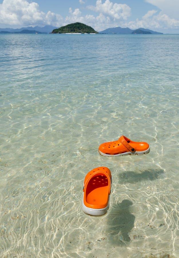 Χαλαρώστε το χρόνο στο καλοκαίρι στην τροπική ζώνη στοκ εικόνα